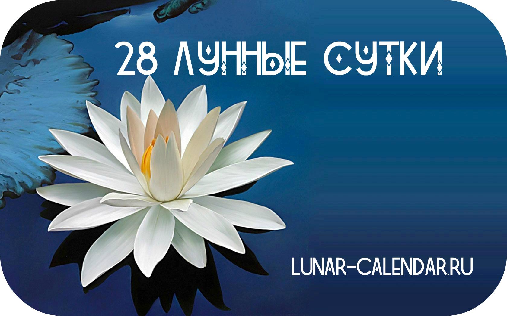 28 лунные сутки